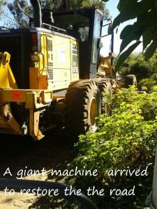 A giant machine arrived to restore the road2